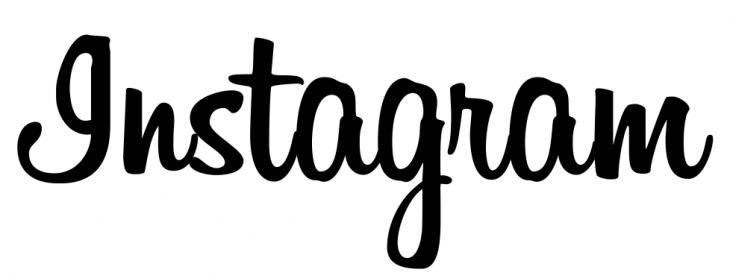 InstagramLogo-730x278